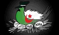 ببغاوات إعلام الجزائر تتمنى تلفيق تهمة الإرهاب للمغربية المختلة عقليا التي كانت في الطائرة