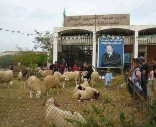 مقر حزب التحرير الحيواني بالجزائر بزعامة الراعي الميت