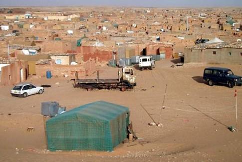 فرار جمـاعي لشباب من جحيـم مخيمات الذل والعار بتندوف
