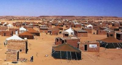 صحراوي نجا من سجن الرشيد بتندوف يفضح جرائم البوليساريو وأمها (الجزائر)