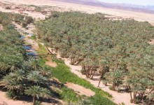 الصحراء المغربية في الوثائق المحلية لواحة فم الحصن
