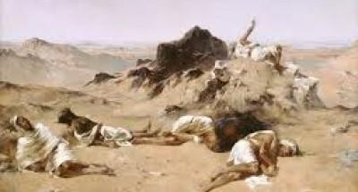 معانات الشعب الصحراوي (الطوارق) مع النظام الجزائري الحركي اللقيط الذي إستعمره