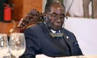 """القرد العجوز """"موغابي"""" ينتصر على شبيهه وحبيبه بوتفليقة رغم أنه لا يستطيع مقاومة النوم"""