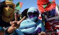 """بث قناة """"الصحراء الوثائقية"""" ينطلق من مصر"""